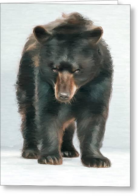 Kodiak Digital Art Greeting Cards - Black Bear Greeting Card by Aleksey Tugolukov