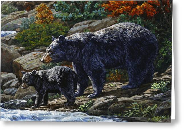 Wood Turtle Greeting Cards - Black Bear Falls - Detail Greeting Card by Crista Forest