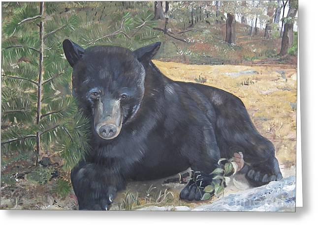 Alertness Paintings Greeting Cards - Black Bear - Wildlife Art -Scruffy Greeting Card by Jan Dappen
