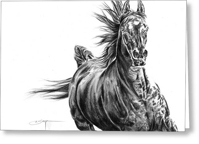 Painted Puppies Drawings Greeting Cards - Black Beauty Greeting Card by Elizabeth Sage