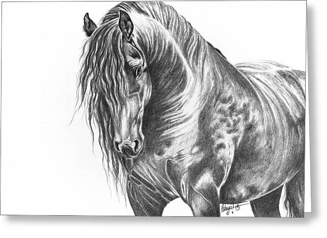 Forelock Drawings Greeting Cards - Black Beauty Greeting Card by Robyn Green