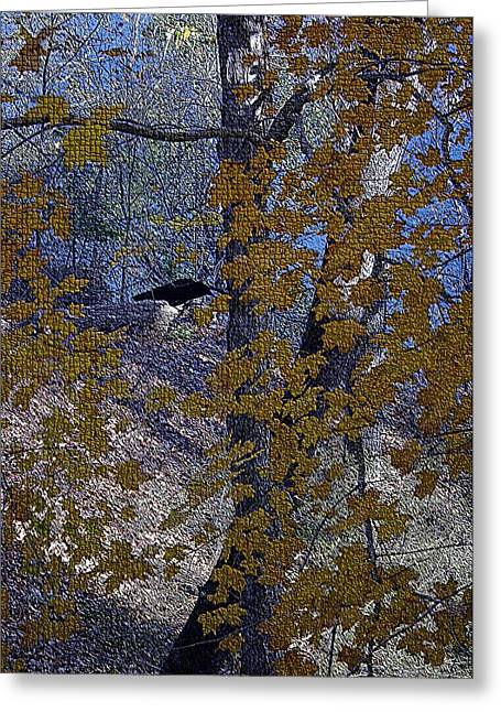 States Tapestries - Textiles Greeting Cards - Black Bird in Autumn Tree Greeting Card by Thia Stover
