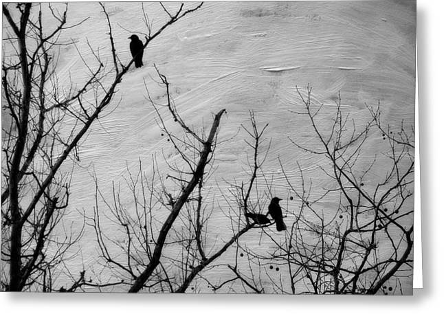 Snow Tree Prints Greeting Cards - Black Birds Greeting Card by Kathy Jennings