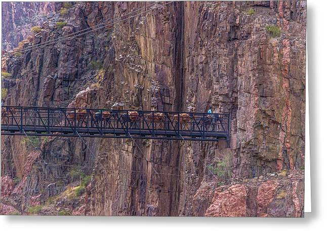 South Kaibab Trail Greeting Cards - Black Bridge In The Grand Canyon Greeting Card by Pete Hendley