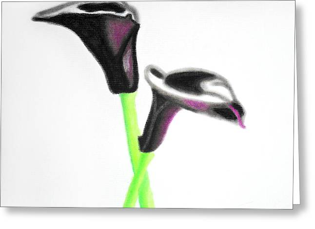Calla Lily Pastels Greeting Cards - Black Calla Lilies Greeting Card by Christine Perry