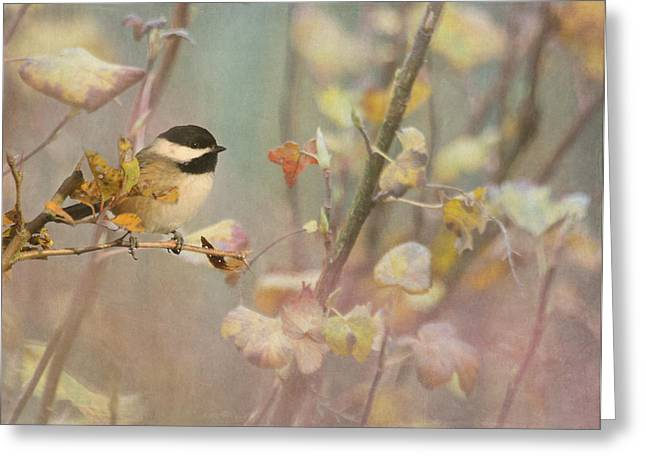 Black Berries Greeting Cards - Black-capped Chickadee Greeting Card by Angie Vogel