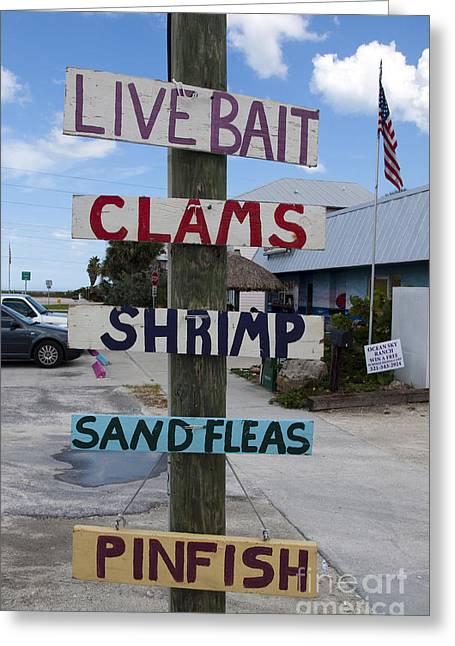 Pinfish Greeting Cards - Black Dog Bait Shop in Florida Greeting Card by Allan  Hughes