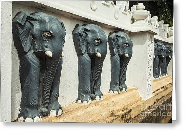 Grate Greeting Cards - Black elephants on temple wall Greeting Card by Patricia Hofmeester