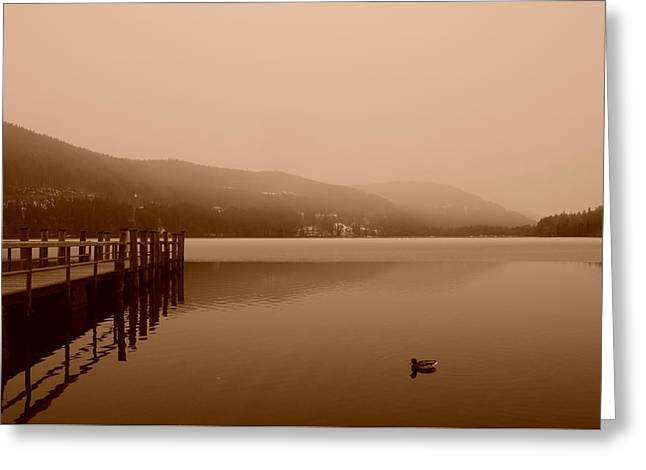 See Fog Greeting Cards - Black Forest Lake Greeting Card by Miguel Winterpacht