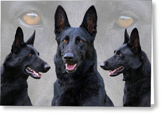 Indiana Art Greeting Cards - Black German Shepherd Dog Collage Greeting Card by Sandy Keeton