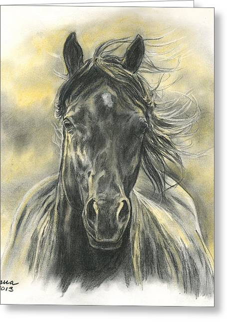 Horse Pastels Greeting Cards - Black Gold Greeting Card by Jana Goode