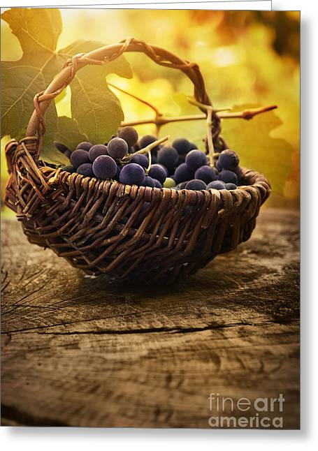 Purple Grapes Greeting Cards - Black grapes Greeting Card by Mythja  Photography