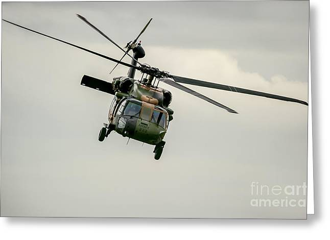 Sikorsky Photographs Greeting Cards - Black Hawk Swoops Greeting Card by Ray Warren