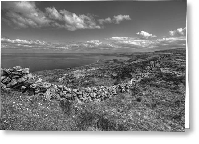 St. Clare Greeting Cards - Black Head scenic view Greeting Card by John Quinn