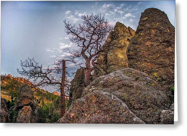 Unique View Greeting Cards - Black Hills Boulders Greeting Card by Paul Freidlund