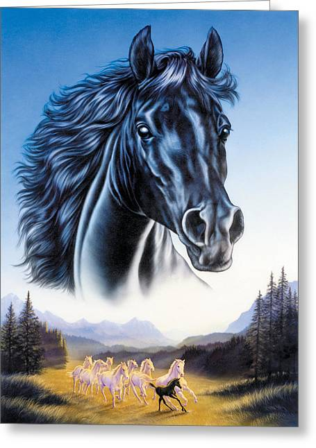 Native American Illustration Greeting Cards - Black Horse and Herd Greeting Card by Andrew Farley