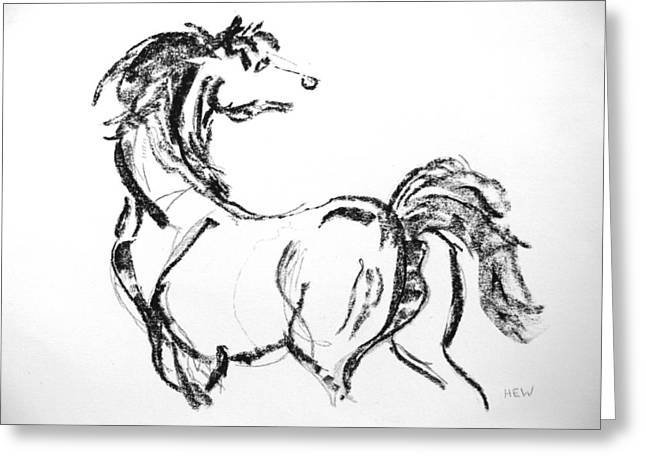 White Tail Pastels Greeting Cards - Black Horse Greeting Card by Holly Wright