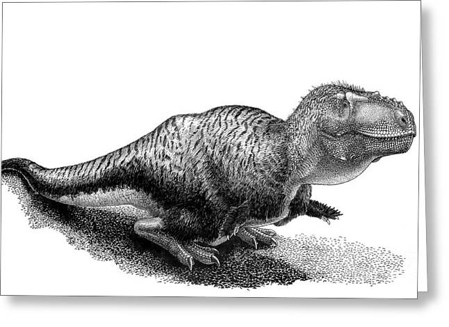 Pen And Ink Drawing Digital Art Greeting Cards - Black Ink Drawing Of Tarbosaurus Bataar Greeting Card by Vladimir Nikolov