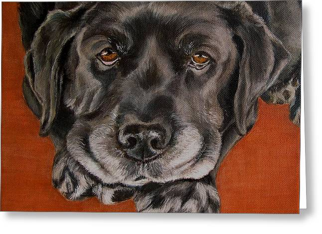 Senior Dog Greeting Cards - Black Labrador Rests Head Rescue Dog Greeting Card by Amy Reges
