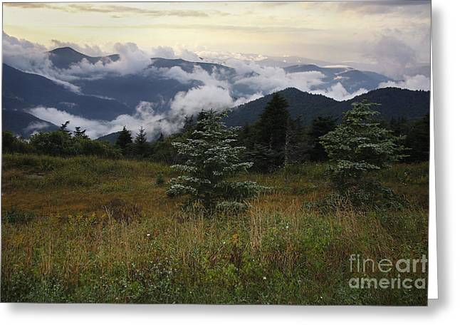 Jonathan Welch Greeting Cards - Black Mountains 2 Greeting Card by Jonathan Welch