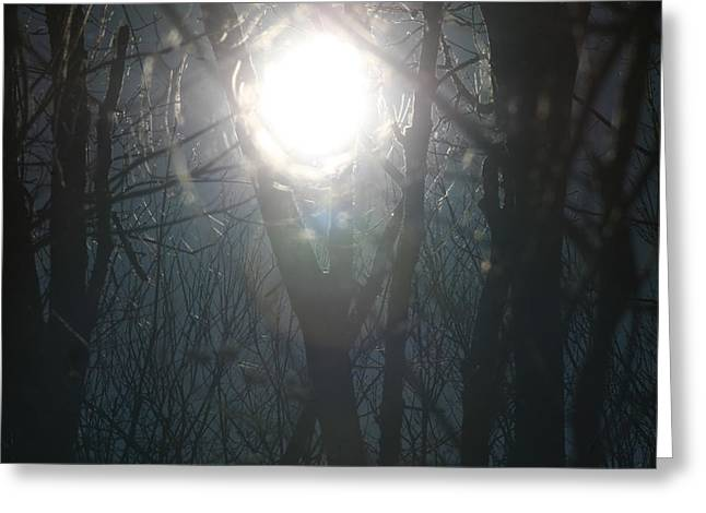 Landscape Photography Greeting Cards - Black on Sun   Greeting Card by Neal  Eslinger