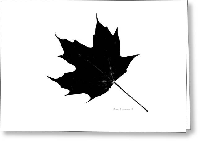 High And Low Greeting Cards - Black On White Maple Leaf Greeting Card by John Stephens