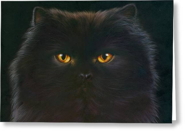 Black Persian Greeting Card by Andrew Farley