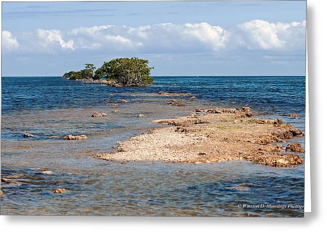 Black Point Marina - Cutler Bay Greeting Card by Winston D Munnings