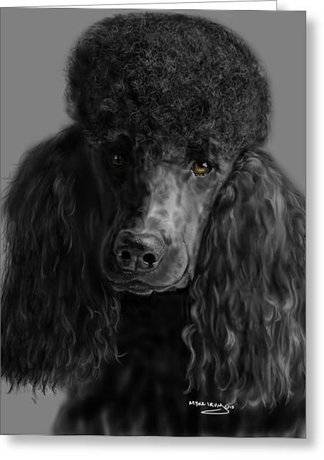 Toy Dog Greeting Cards - Black Poodle Greeting Card by Myke  Irving