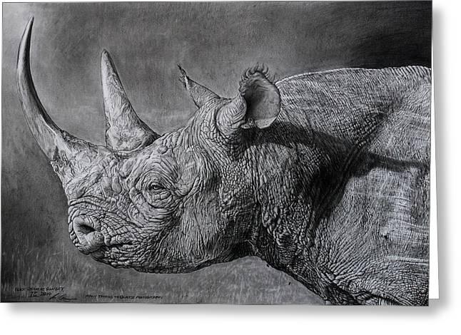 Rhinoceros Greeting Cards - Black Rhino at sunset. Greeting Card by Ian Cuming