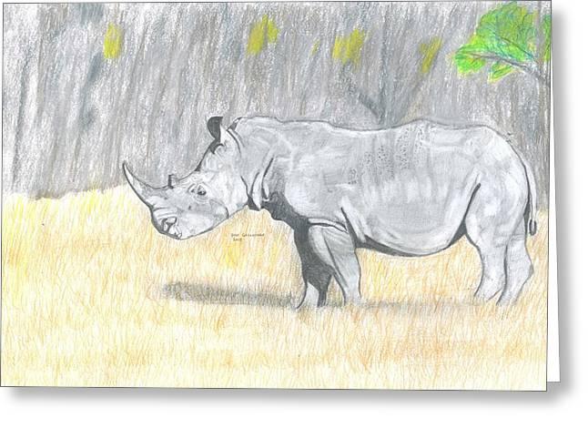 Rhinoceros Drawings Greeting Cards - Black Rhino Greeting Card by Don  Gallacher