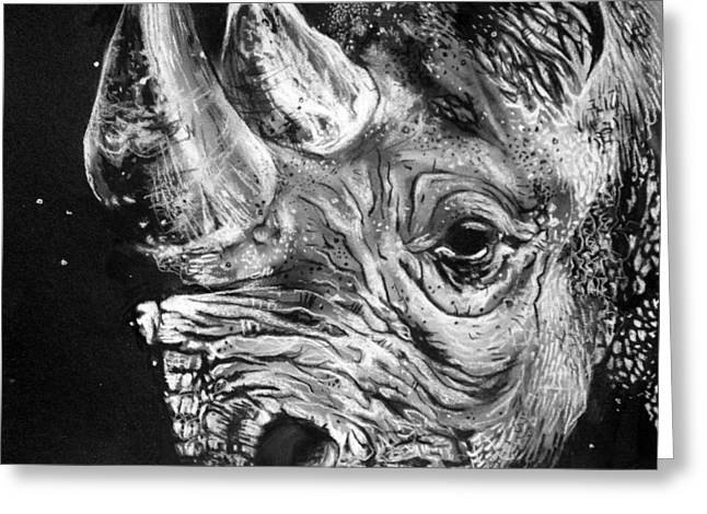 Rhinoceros Drawings Greeting Cards - Black Rhino Greeting Card by Sharlena Wood