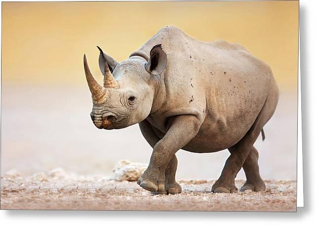 Black Rhinoceros Greeting Card by Johan Swanepoel