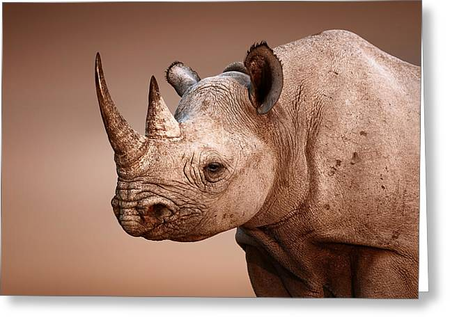 One Horned Rhino Greeting Cards - Black Rhinoceros portrait Greeting Card by Johan Swanepoel