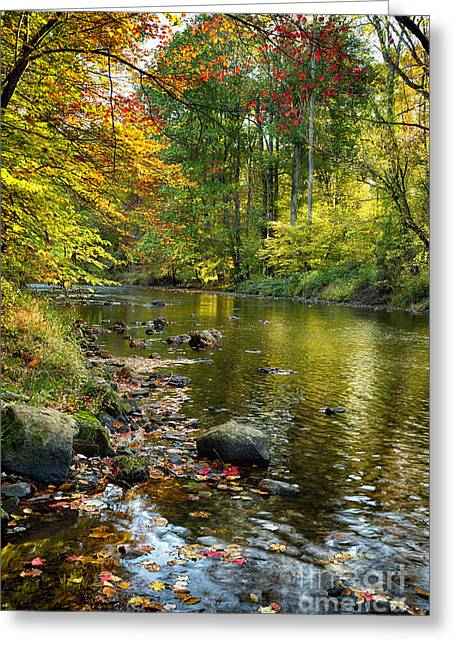 Hunterdon County Greeting Cards - Black River Fall Scenic in New Jersey Greeting Card by George Oze
