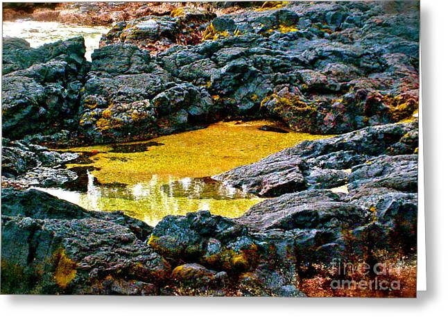 Halona Greeting Cards - Black Rocks of Hilo - No.158 Greeting Card by Joe Finney
