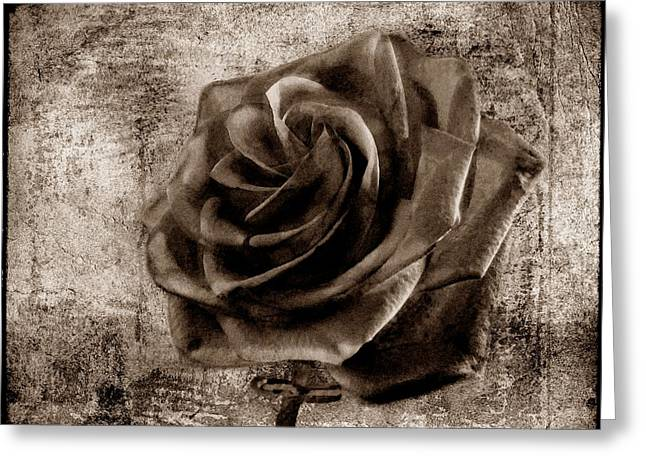 Black Lodge Digital Greeting Cards - Black Rose Eternal Sepia  Greeting Card by David Dehner