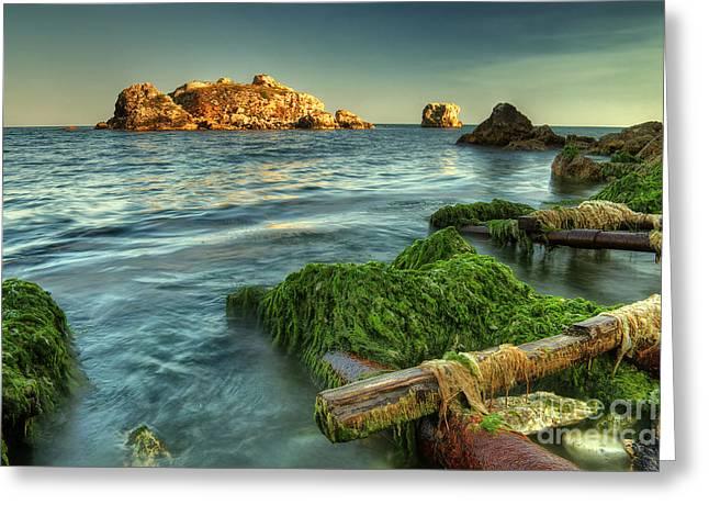 Bulgaria Mixed Media Greeting Cards - Black sea dream... Greeting Card by Stefan Stefanov