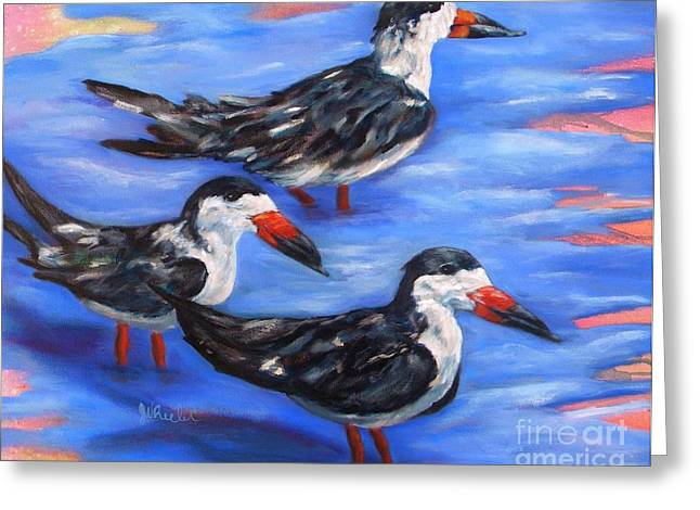 Tern Paintings Greeting Cards - Black Skimmers Greeting Card by JoAnn Wheeler