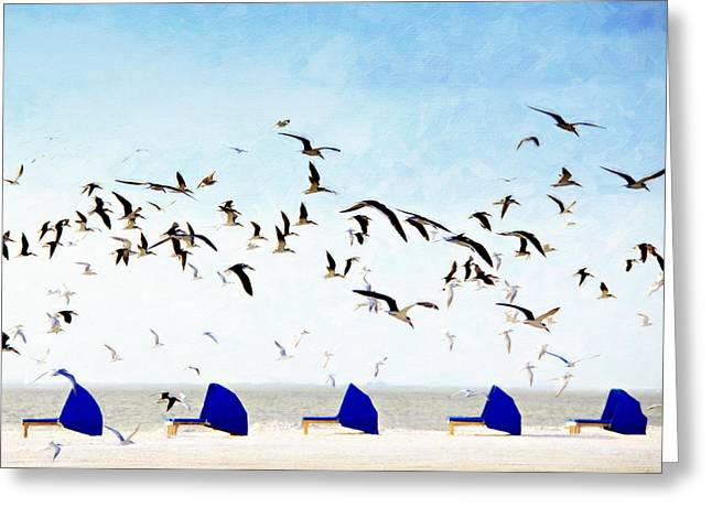 Chaise-lounge Greeting Cards - Black Skimmers Over Beach Chairs Greeting Card by Vicki Jauron