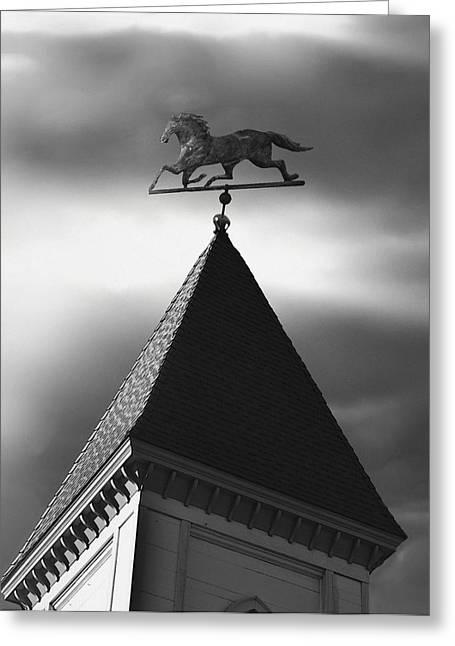 Weathervane Greeting Cards - Black Stallion Weathervane Greeting Card by Larry Butterworth