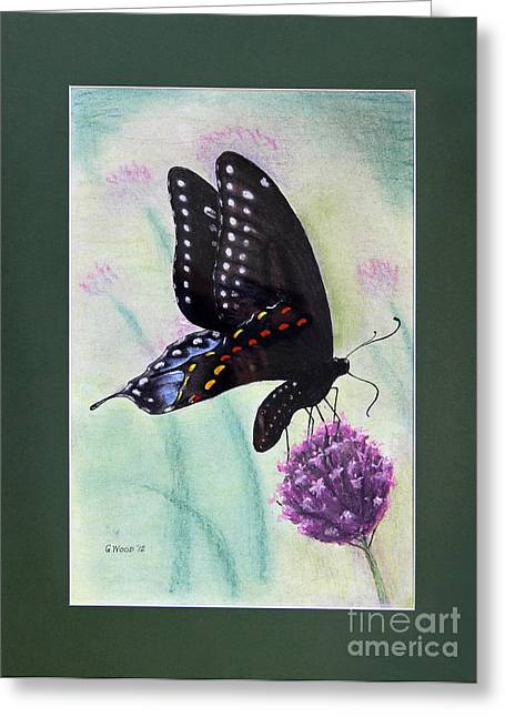 Fauna Pastels Greeting Cards - Black Swallowtail Butterfly by George Wood Greeting Card by Karen Adams