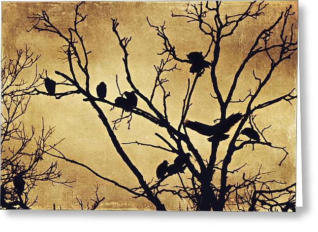 Vulture Silhouettes Greeting Cards - Black Vultures at Rest Greeting Card by Jessie Gould