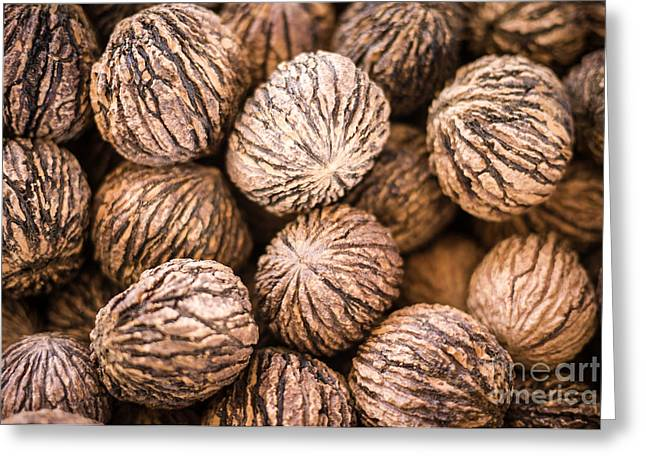 Nut Greeting Cards - Black Walnuts Greeting Card by Edward Fielding