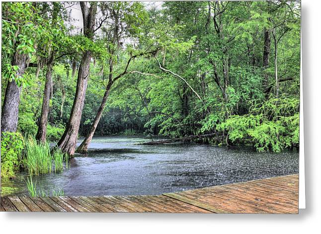 Cape Fear River Greeting Cards - Black Water Thunder Greeting Card by JC Findley