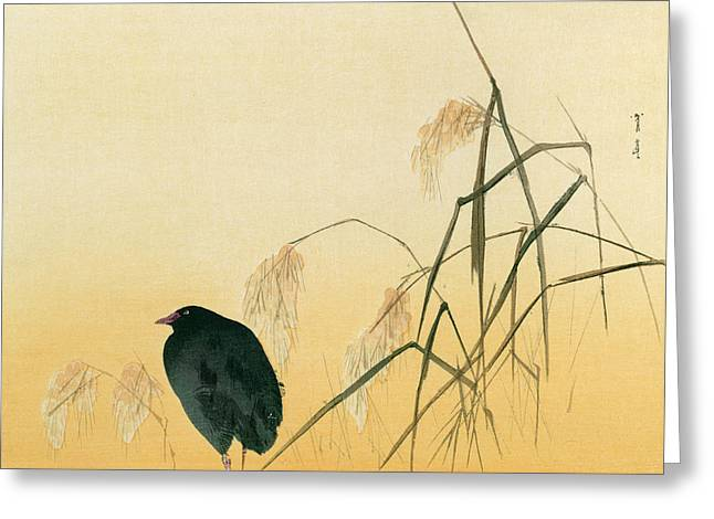 Asian Art Greeting Cards - Blackbird Greeting Card by Japanese School