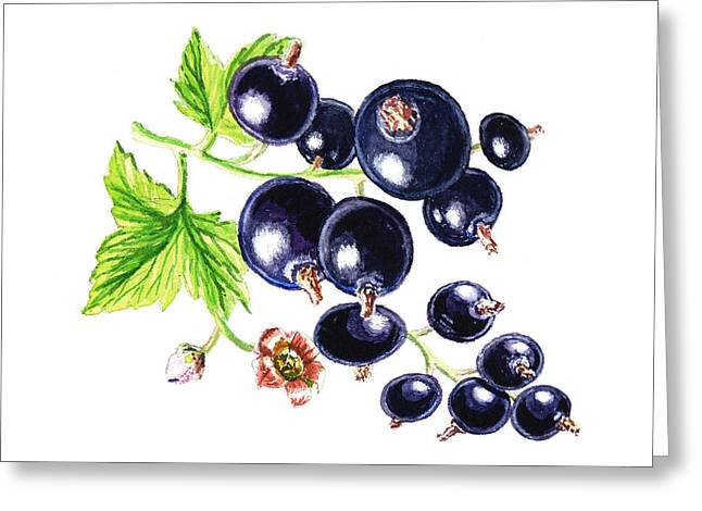 Purchase Greeting Cards - Blackcurrant Happy Berries Greeting Card by Irina Sztukowski