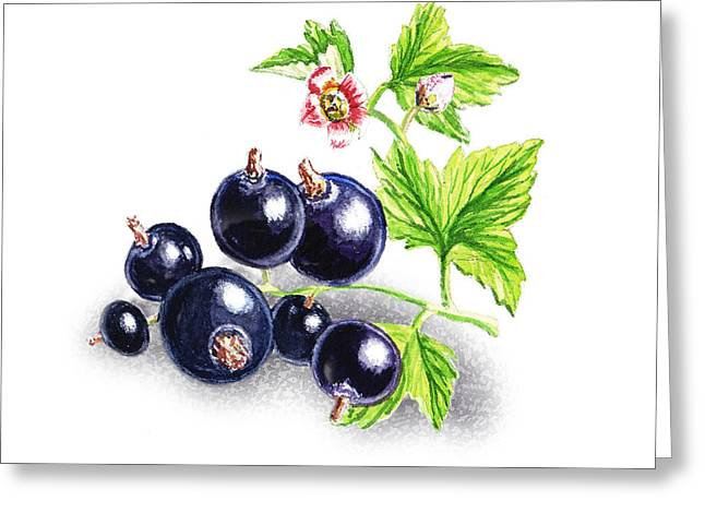 Purchase Greeting Cards - Blackcurrant With Leaves And Flowers Greeting Card by Irina Sztukowski