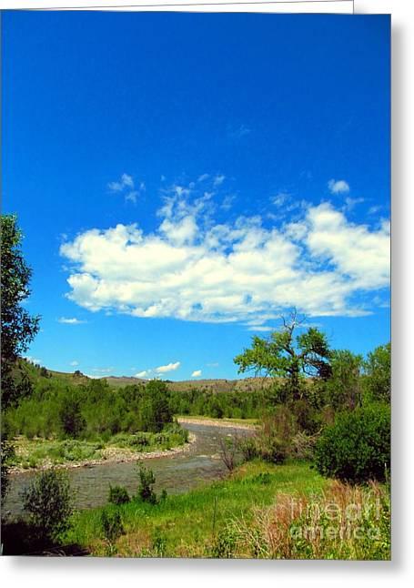 Blackfoot River Wild Greeting Card by Matthew Peek