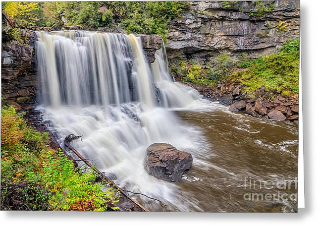 Tannic Acid Greeting Cards - Blackwater Falls Greeting Card by Anthony Heflin